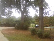 drivewayyard
